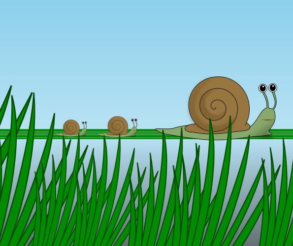 Анимация семейства улиток